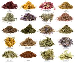 herbal remedies chart